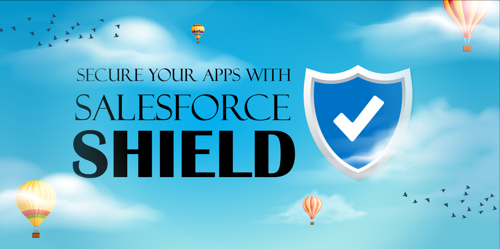 Salesforce Shield